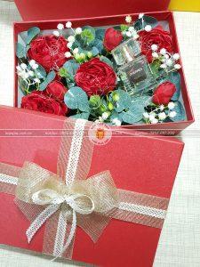 Hộp quà hoa hồng HQ17 – Kích thước 23x17x7