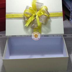 Hộp đựng quà tặng HQ14 - Kích thước 30x20x10